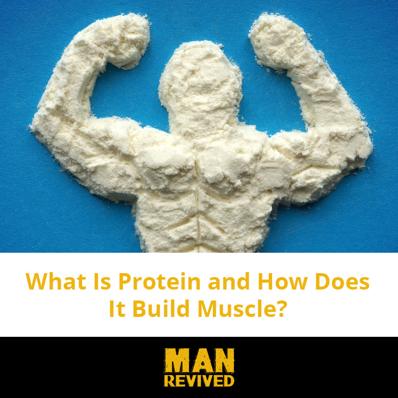 what is protein header
